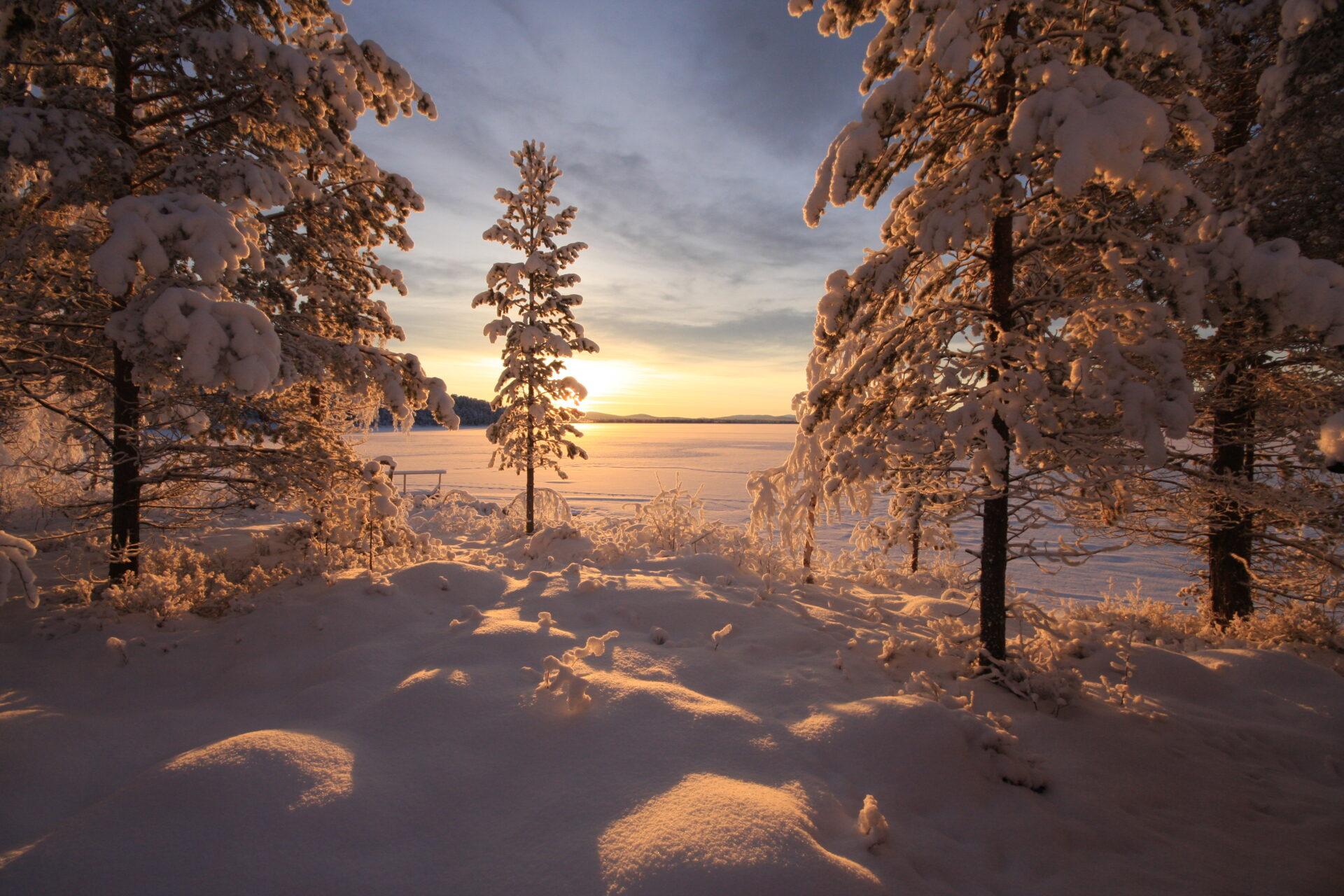 Zicht op het Menesjärvi meer