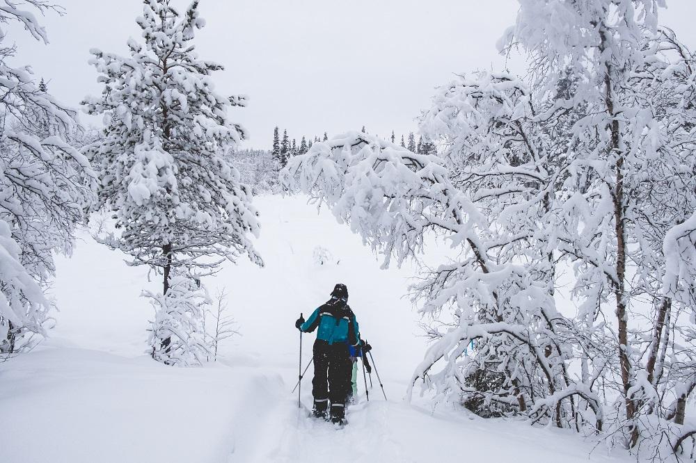 Sneeuwschoenwandelen in Zweeds Lapland.