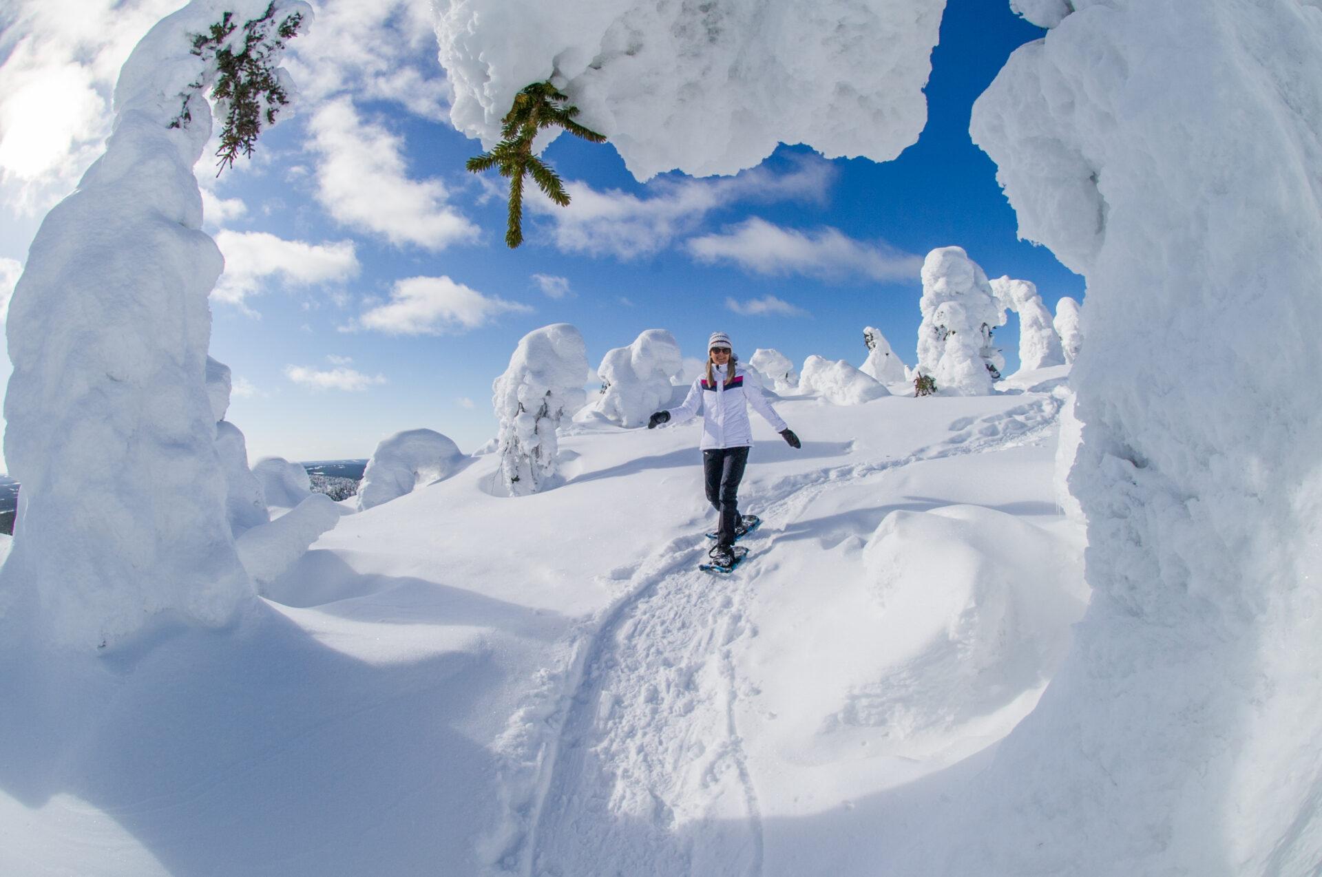 Sneeuwschoewandelen