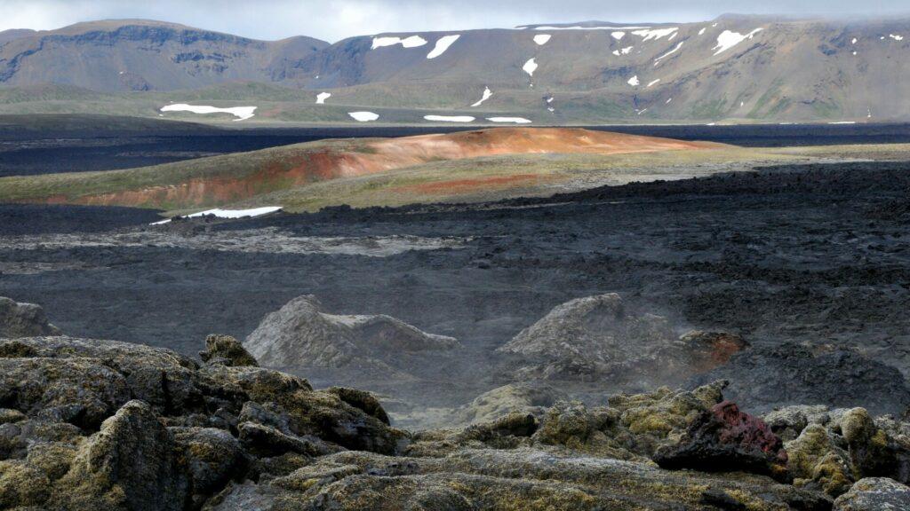 Vogels, vulkanen en walvissen