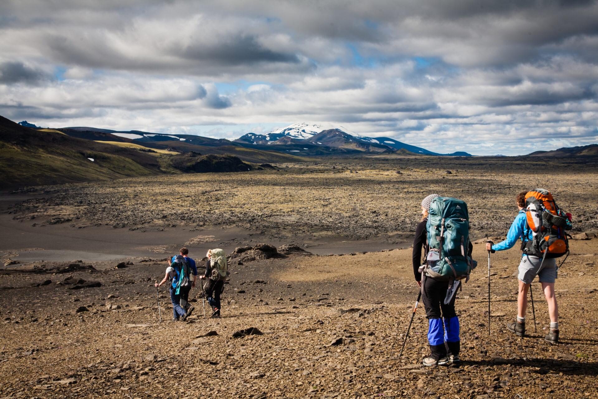 Wildernis trekking
