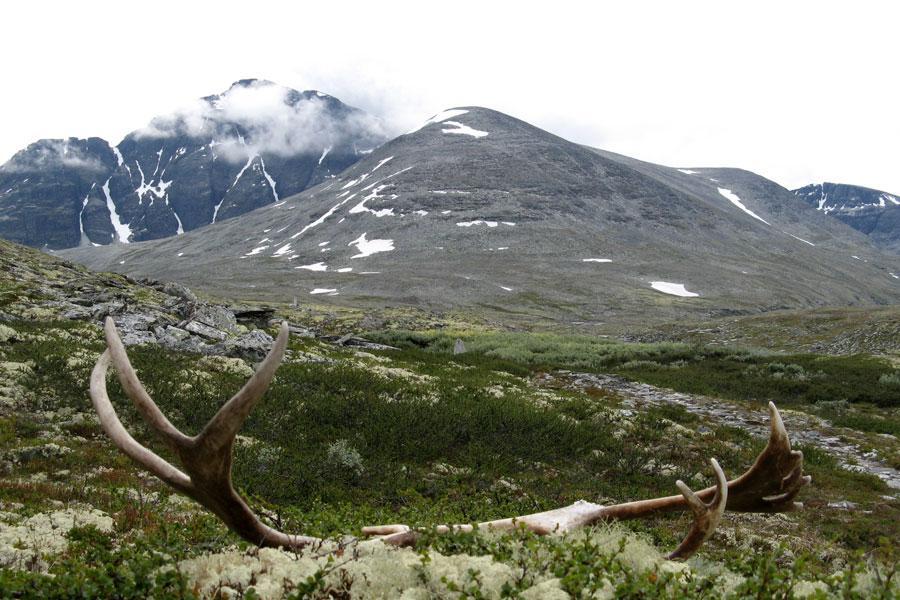 Noorwegen in al zijn facetten