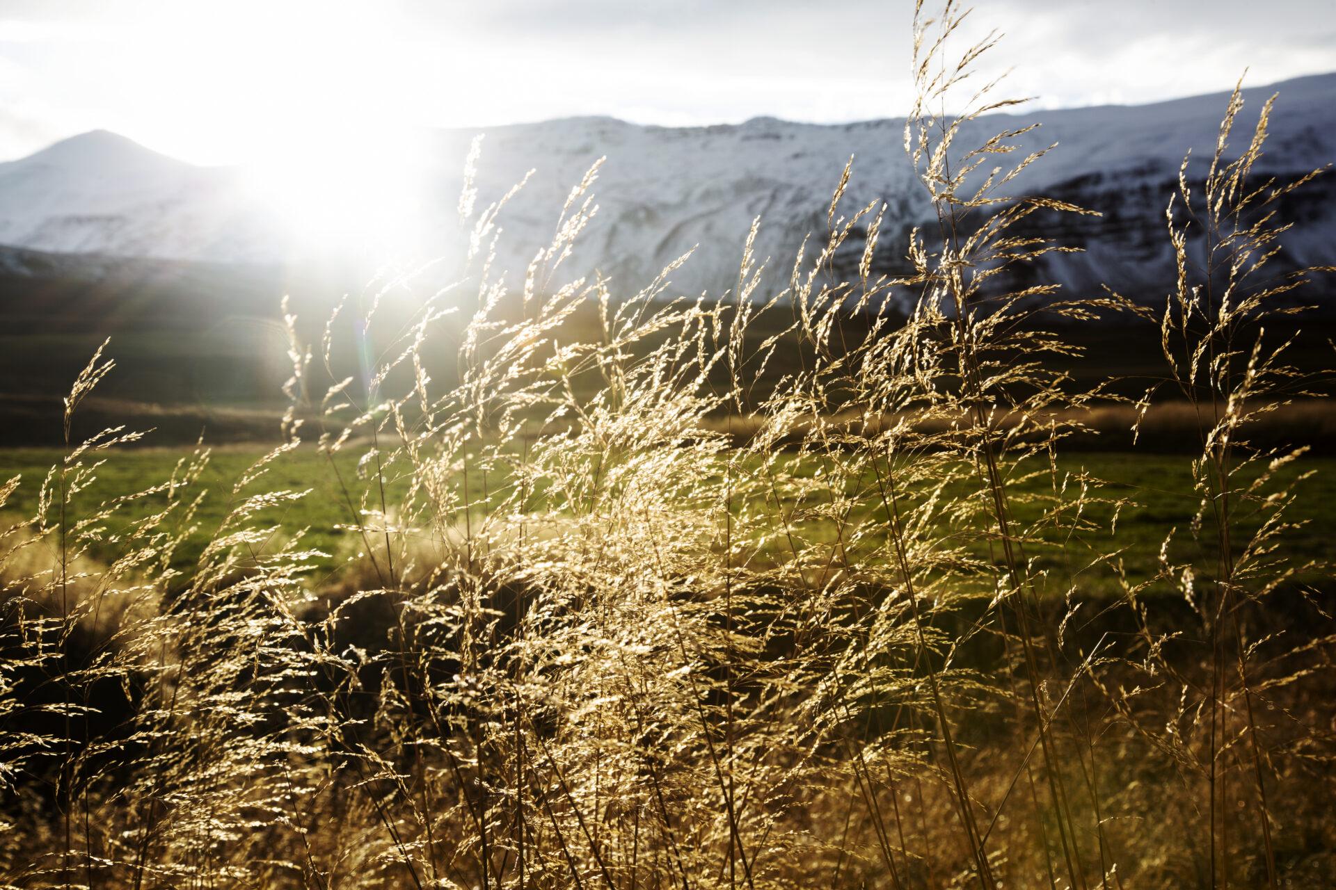 Golden hour Noord-IJsland