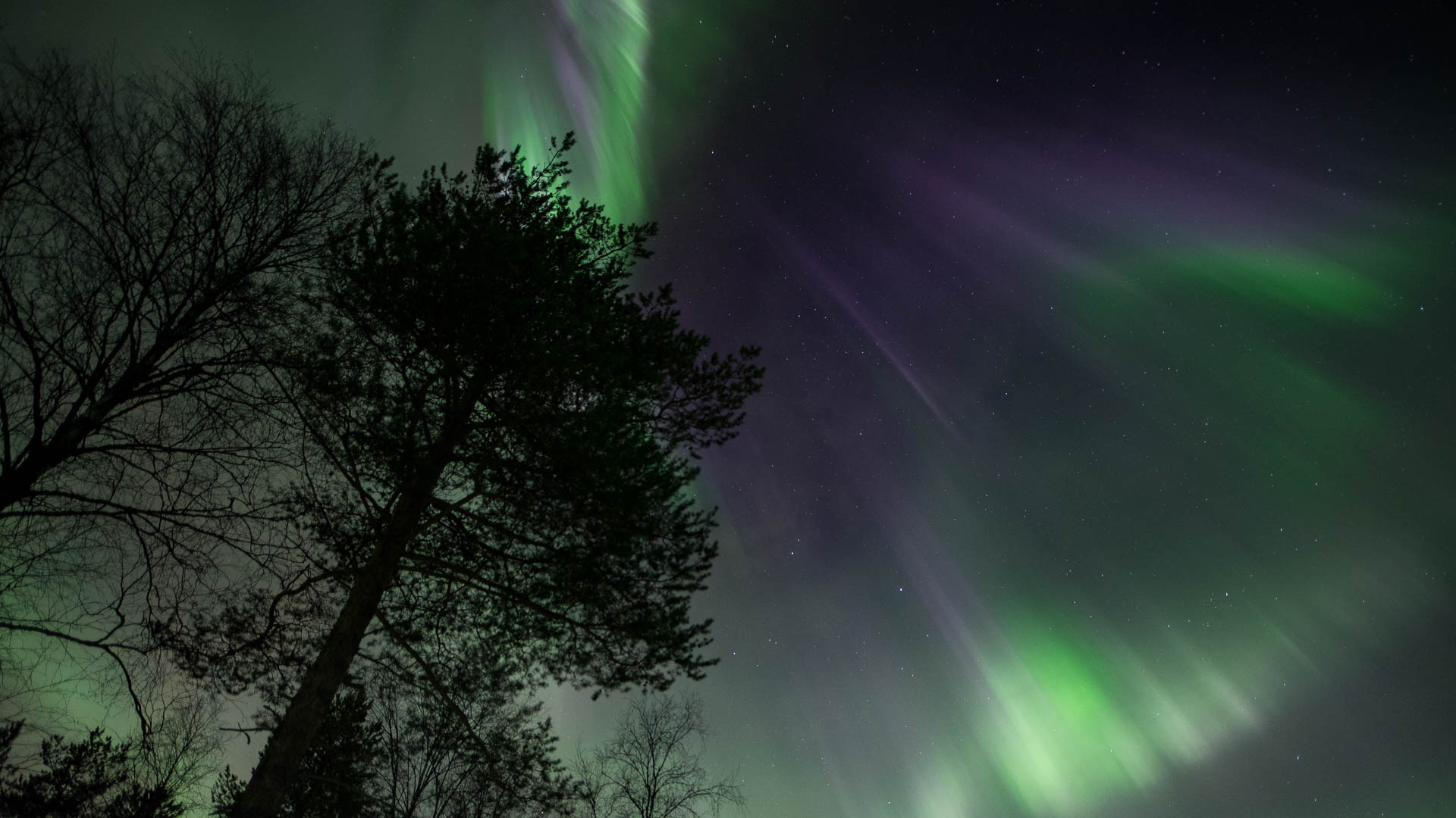 Reindeer Safari to Search for the Northern Lights – 1 (Michael Mead)